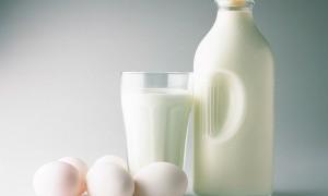 Leche, Milk y Dairy
