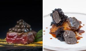 Trufa negra, el manjar más exclusivo de los festines gastronómicos