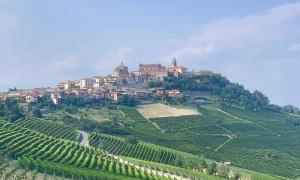 Barolo y Barbaresco, los reyes de los vinos italianos