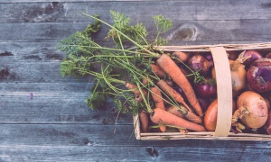Slow Food, una corriente que aumenta cada día