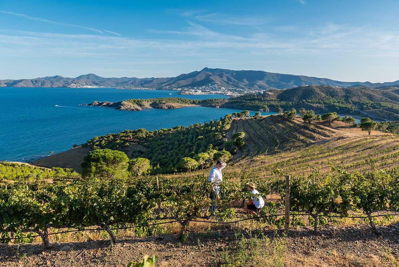 Ruta del Vino DO Empordà. Foto: Óscar Rodbag