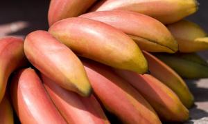 El plátano rojo con sabor a frambuesas